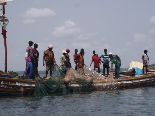 Fishermen hauling the nets, Pepel area
