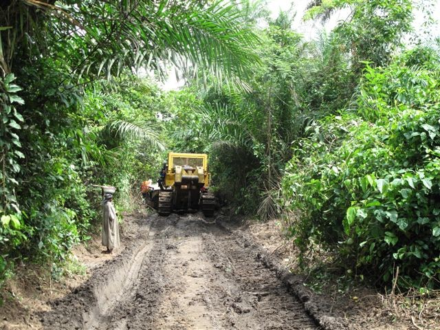 Constructing rail through African forest