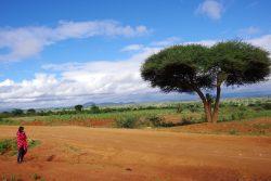 Tanzania landscape - breathtaking